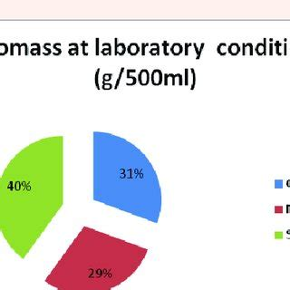 CONTENT AND COMPOSITION OF LIPID PRODUCED BY CHLORELLA